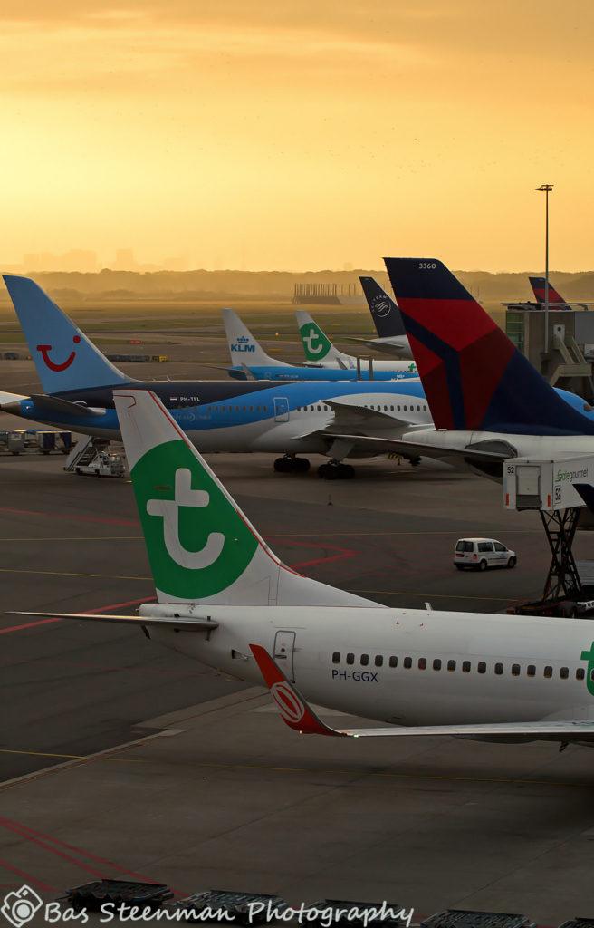 transavia | B737-800 | PH-GGX | EHAM/AMS
